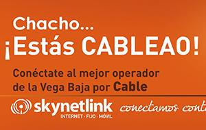 Skynetlink